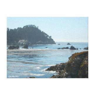 Lobos Sea Scape Canvas Print