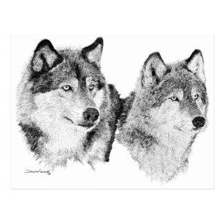 Lobos solitarios postales