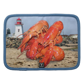 Lobster and Lighthouse Ocean Photograph Organizer