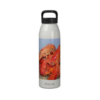 Lobster and Lighthouse Ocean Photograph Water Bottle
