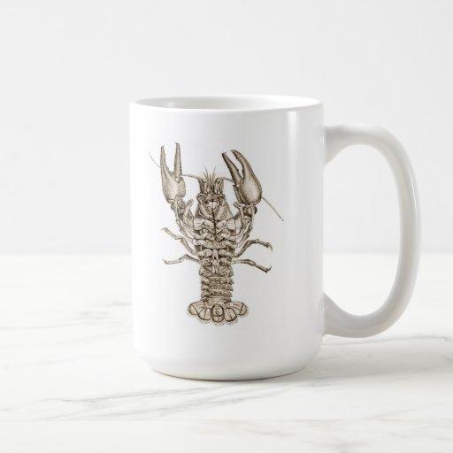 Lobster - Antique image - Ceramic Mug