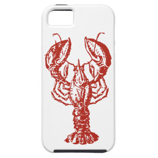 Lobster Art, King of Seafood Gifts iPhone SE/5/5s Case