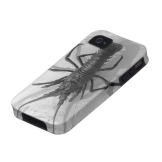 Lobster Black and White Photograph Case-Mate iPhone 4 Cover