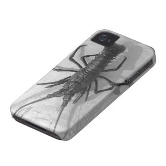 Lobster Black and White Photograph iPhone 4 Covers