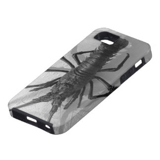 Lobster Black and White Photograph iPhone 5 Covers