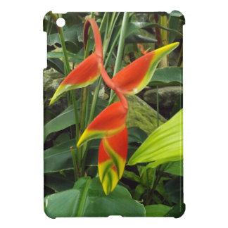 Lobster Claw Flower iPad Mini Cover