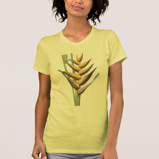 lobster claw(Heliconia humilis) by Redouté T-shirt