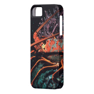 Lobster Crawling iPhone SE/5/5s Case