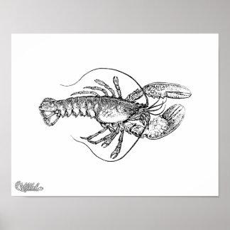 Lobster Illustration Poster