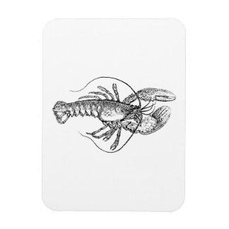 Lobster Illustration Rectangle Magnet