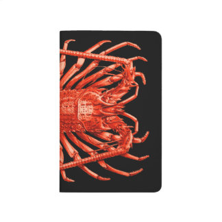 Lobster Lovers Drawing Vintage Style Notebook