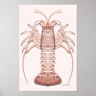 Lobster Poster ~ Rock Lobster