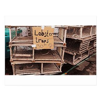 Lobster Trap Photo Postcard