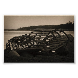 Lobster Traps Sepia Poster