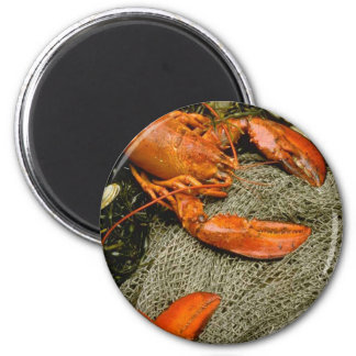 Lobsters 2 Inch Round Magnet