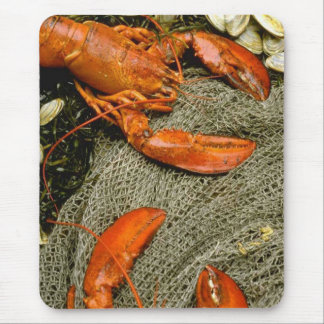 Lobsters Mouse Pad