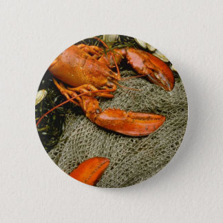 Lobsters Pinback Button