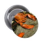 Lobsters Pins
