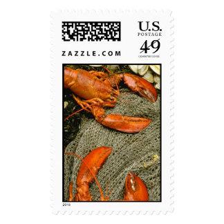 Lobsters Postage Stamp