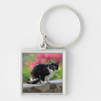 Local cat at The Gunner's Tavern Keychain