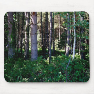 Local Woodland Scenes Mouse Pad