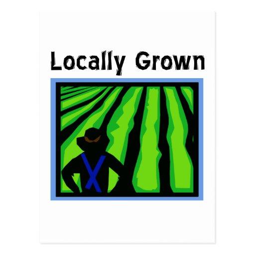 Locally Grown Postcard