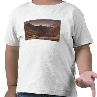 Loch Coruisk, Isle of Skye - Dawn, c.1826-32 (w/c Tshirts