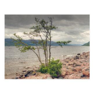 Loch Ness Landscape Postcard