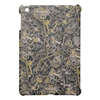 Lock And Key iPad 1 Speck Case iPad Mini Cover