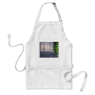 Locked gates with ornaments of metal strips adult apron