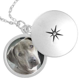 Locket conmemorativo de la foto del mascota de enc medallón