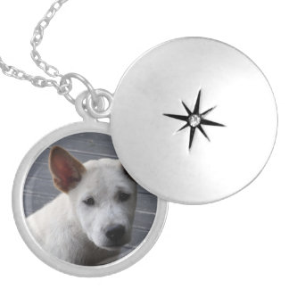 Locket conmemorativo del mascota - plata plateada medallón