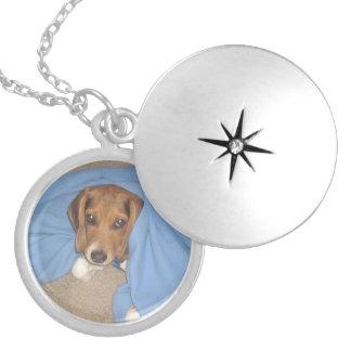 Locket redondo de la foto de encargo del perro collar redondo