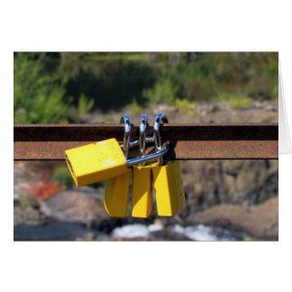 Locks at Mary Ellen Kramer Great Falls Park Card