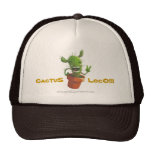 ¡Loco del cactus!!! Gorros Bordados