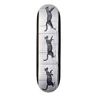 LOCO MOTION Skateboard: Cat Walking Gallop Skateboard