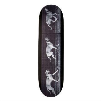 LOCO MOTION  Skateboard: Dog Dread Galloping Skateboard
