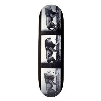 LOCO MOTION  Skateboard: Lion Walking Skateboard