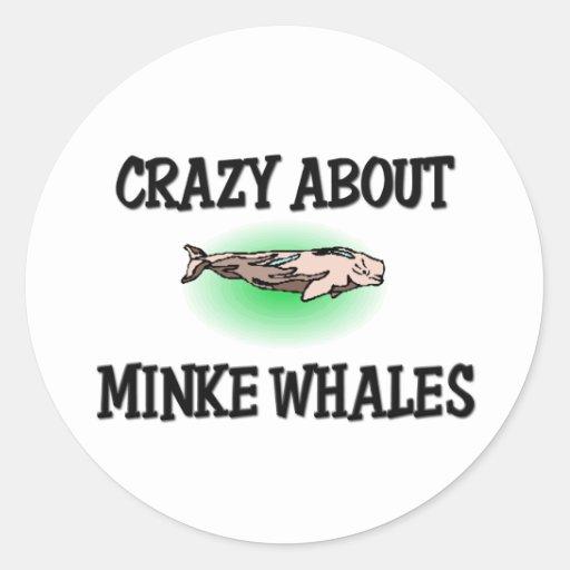 Loco por ballenas pequeñas pegatina redonda