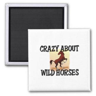 Loco por caballos salvajes iman