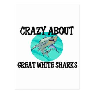 Loco por grandes tiburones blancos postales