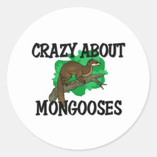 Loco por mangostas pegatina redonda
