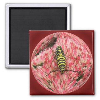 Locust Borer 3 ~ magnet