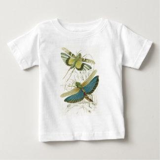 Locusta Cristata (lower), Locusta flava (upper) Baby T-Shirt