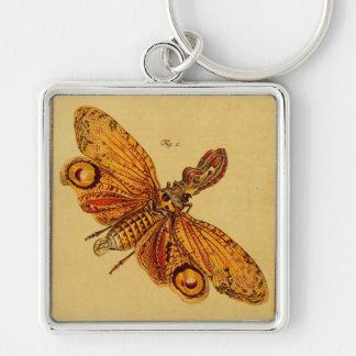 Locusta Keychain