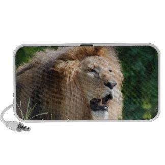Locutores del león que gruñen sistema altavoz