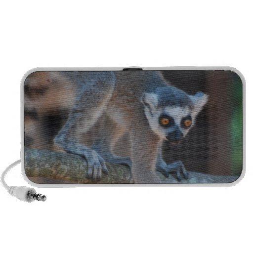 Locutores jovenes del Lemur Portátil Altavoces