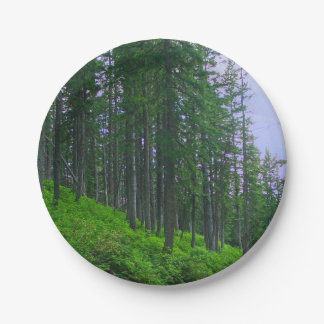 Lodge pole forest paper plate