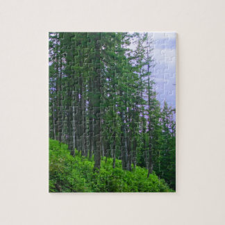Lodge pole forest jigsaw puzzles