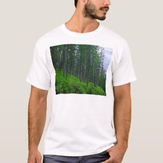 Lodge pole forest T-Shirt
